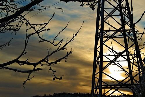 winter clouds sunrise finland steel branches fi kuopio
