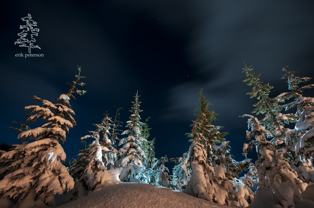 Bear Lodge Mount Washington Vancouver Island