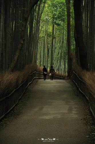 Arashiyama 嵐山 - 02