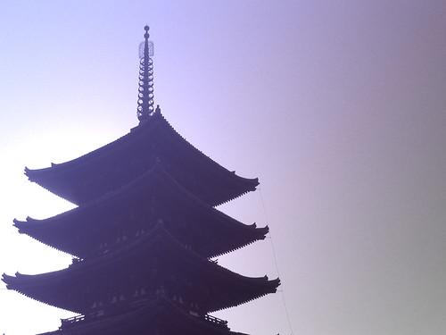 Nara - violet