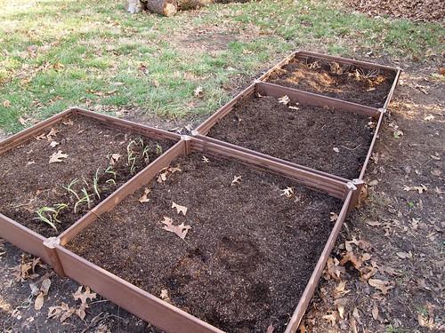 Planted Garden