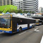Brisbane Transport 5041, 5042