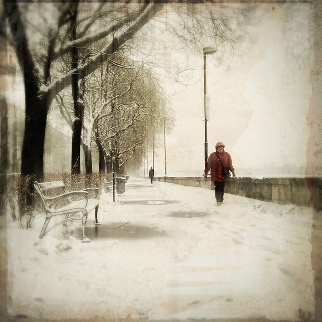 Shuffling presence of the absolute winter
