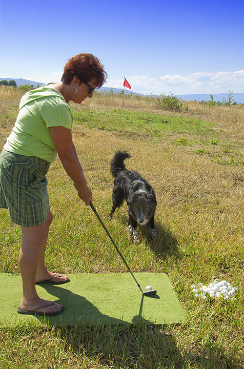 golf+short+game