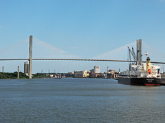 View of Savannah River