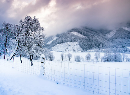 winter snow cold fence austria österreich friday sigma1770 sonyalpha700