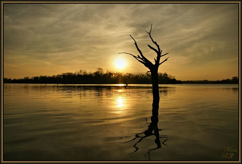 sunset lake reflection nature water golden pond texas scenic bayou pasadena armandbayou