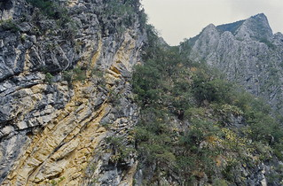 Folded carbonates of the Sierra Madre Oriental