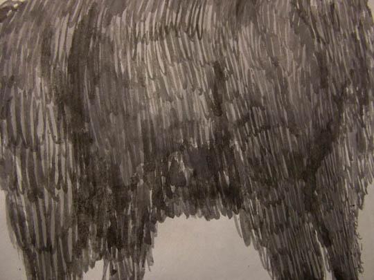 llama fur