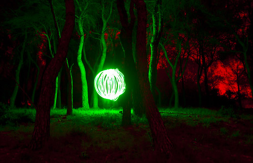 Orb in the woods