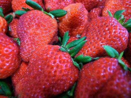 草莓 大湖草莓 二號