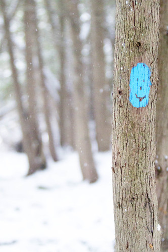Trail marker :) by Margaret Podmore Photography