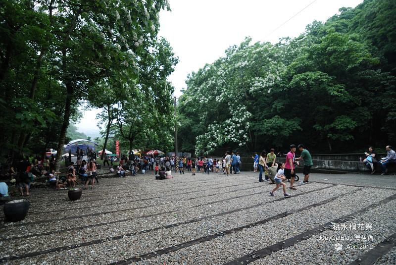 2012挑水桐花祭DSC_4474