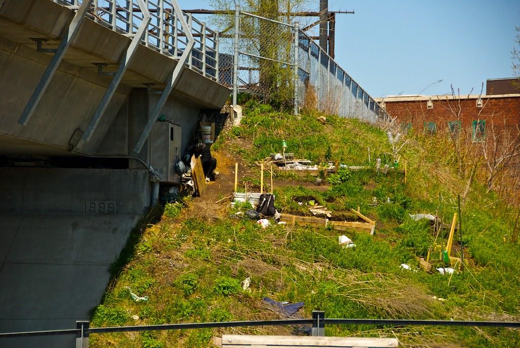 Poésie montréalaise - le jardinier sans-abris