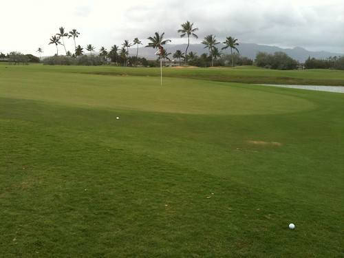 Hawaii Prince Golf Club 419
