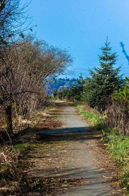 Cedar Grove Trail2
