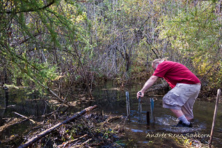Clearing Out a New Beaver Dam  (8 of 9).jpg | by Andrée Reno Sanborn
