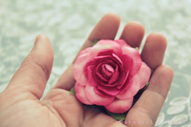 Contemplanto mi rosa de papel