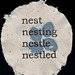 Amanda Gordon Miller: Nest, Nesting, Nestle, Nestled
