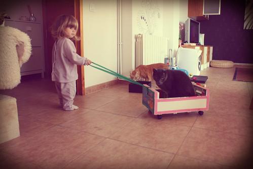 Enya jugando con Pulo