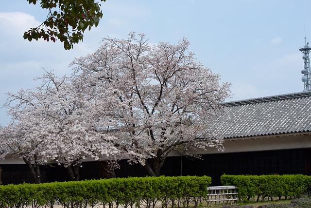 2012-kyushu-542