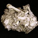 dem bones-dem bones-dem dry bones by Shelby Townsend