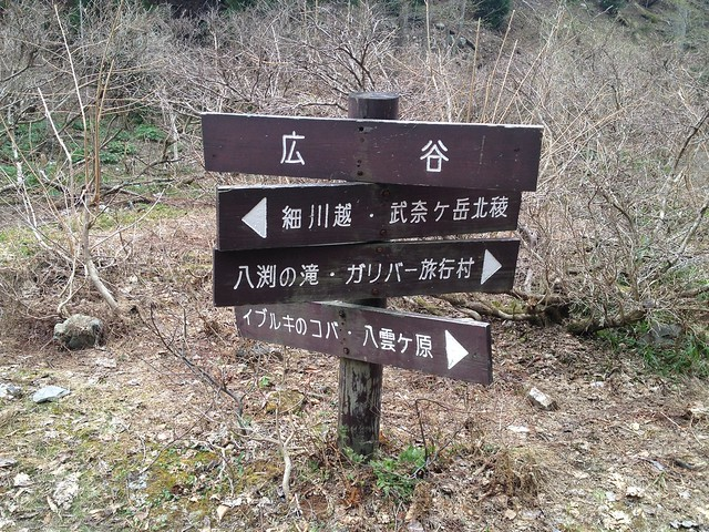 武奈ヶ岳 広谷