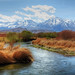 Owens River by tom.riggs63