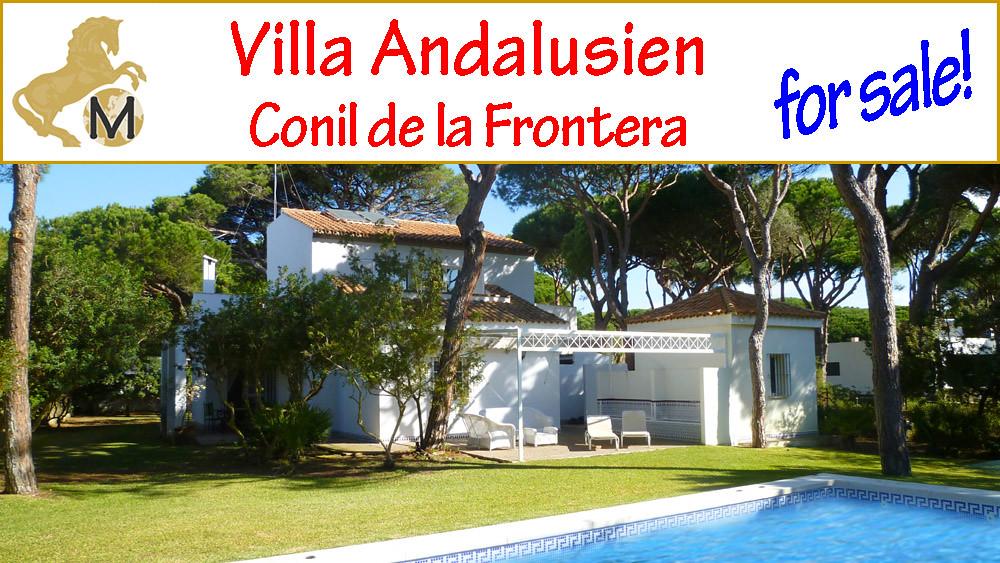 Spanien Reit Immobilien Fincas Villen Haciendas S Most Interesting