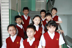 child, people, class, school, education, secondary school, person,