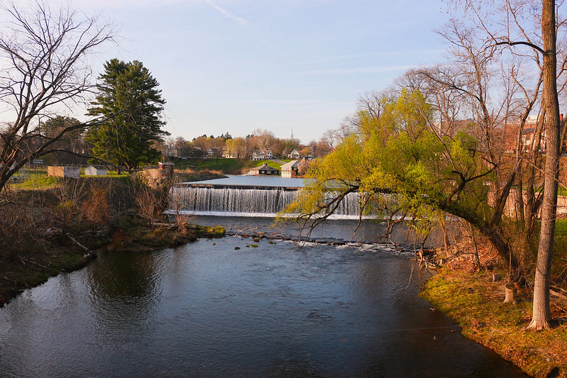 Smith: Paradise Pond