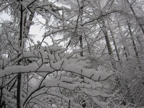 重そうな雪 by Poran111