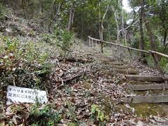 太戸の滝 #6