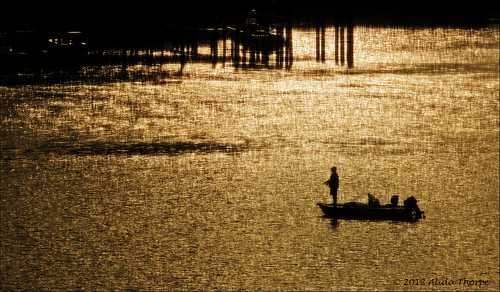 morning fisherman by Alida's Photos