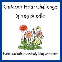 Spring Bundle Button