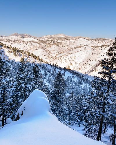 trees winter usa sun mountain snow mountains tree sunrise season landscape colorado seasons northamerica mountgalbraithopenspace