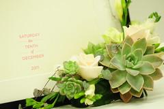 mys_20111210_03