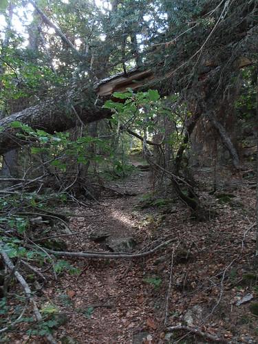 moundeilhs -septembre 2011 017