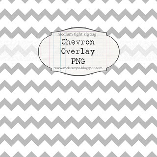 chevron tight med WHITE overlay preview NOT FOR PRINT