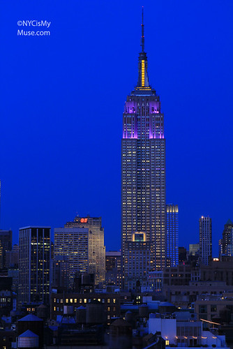 Empire State Building gone to the dogs in Purple and Yellow