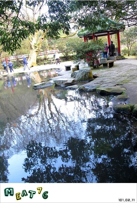 【遊記】陽明山國家公園|櫻花乍現在粉紅意境的花花世界20