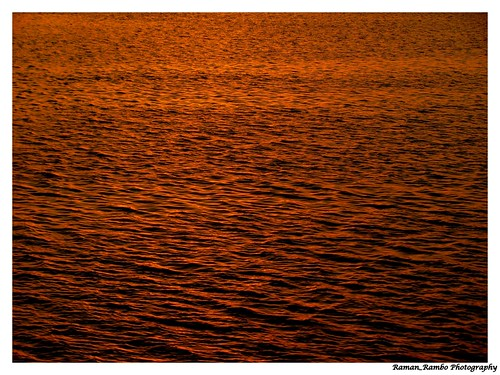 Golden water illuminated by Sunset