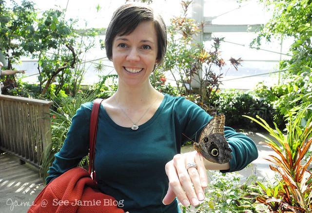 Jamie Butterfly