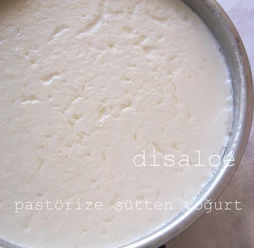 hazır sütten yoğurt