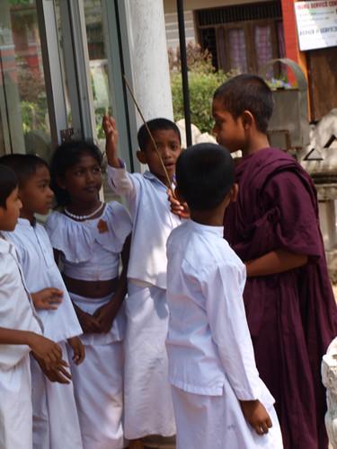 шри-ланка, мальчик-монах и дети