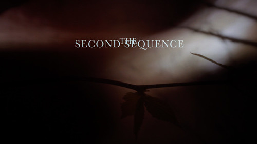 The Second Sequence Thumb 2