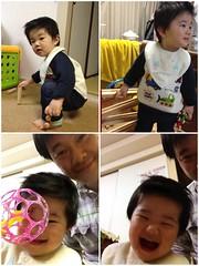 とらちゃんと遊ぶ(2012/3/13)