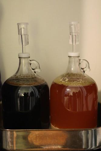 Twin Brew Progress (Day 4)
