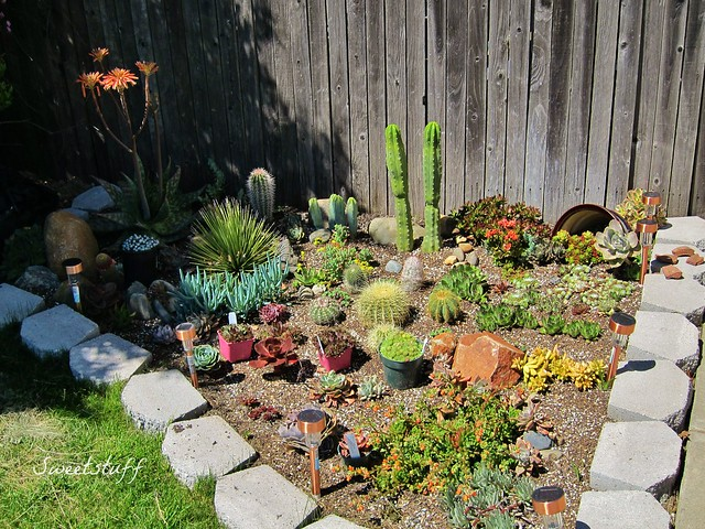 Front planter spring 2012