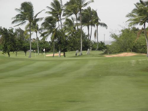 Hawaii Prince Golf Club 305